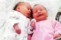 Sofie a Adélka Ulipovy se narodily 23. 3. 2020. Míry 1,64 kilogramu a 45 cm a 2,18 kilogramu a 48 cm. Maminka Romana Ulipová a tatínek Vilém Ulip. Doma na ně čekají bratříčci Davídek a Míša.