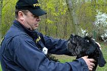Policejní psi z Česka a německého Saska soutěžili v Kaňkově.