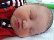 Michal Hotový se narodil 11. dubna 2018 v 11.20 hodin mamince Andree Hlaváčové z Mostu. Měřil 51 cm a vážil 4,02 kilogramu.