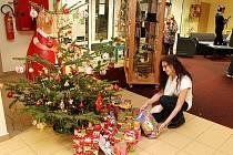 Chlupaté Vánoce v litvínovské knihovně.