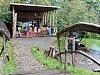 Lesní školka otevírá v holešovské zámecké zahradě