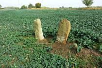 Repliky menhirů u obce Droužkovice.