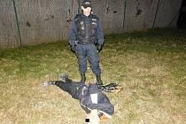 Zadržený muž, který tropil výtržnosti v ulici Hořanská cesta, půjde k přestupkové komisi.