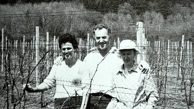 Vinice na Špičáku, první vinice založená Ivanem Váňou přímo na území města Mostu.