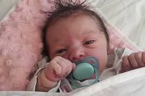 Valerie Novotná se narodila 18. 9. 2020 v 00.16 hodin Pavle a Davidovi Novotným. Měřila 49 cm a vážila 3,28 kg.