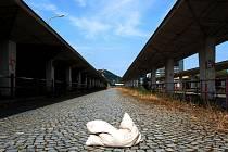 Polštář na opuštěném autobusovém nádraží v Mostě.