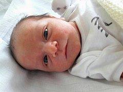Michal Zamazal se narodil 7. října 2017 v 8.20 hodin mamince Věře Jarošové z Litvínova. Měřil 49 cm a vážil 3,2 kilogramu.