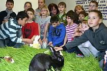 Děti si přinesly do školy svá zvířata.