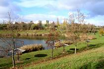 Podzimní scenérie u vodní nádrže Benedikt v Mostě.