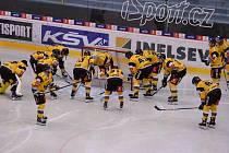 Hokejisté HC Verva Litvínov.