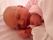 Ellen Zajícová se narodila 13. listopadu 2017 v 16.28 hodin mamince Květuši Zajícové z Mostu. Měřila 50 cm a vážila 3,15 kilogramu.