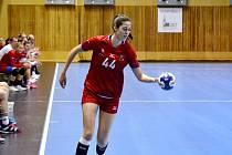 Házenkářské reprezentantky v modelovém zápase s dorostenci Lovosic.