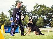 Mostečanka Jitka Duffková a její německý ovčák Alex z Kristova pojedou v říjnu na mistrovství světa ve sportovní kynologii.