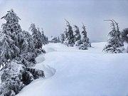 I Cínovec zasypal sníh. Místy je ho až 50 cm. Foceno poblíž hotelu Krušnohorský dvůr. 1.9. 2019