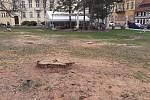 Stromy musely ustoupit opravě koryta Bystřice, havarijní stav.