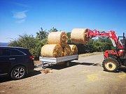Zemědělci na Teplicku se zásobují krmnou slámou. Sena je nedostatek