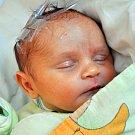 KAROLÍNA PARTÍKOVÁ se narodila Jitce Partíkové z Košťan 13. února ve 22.52  hod. v teplické porodnici. Měřila 49 cm a vážila 3,0 kg.