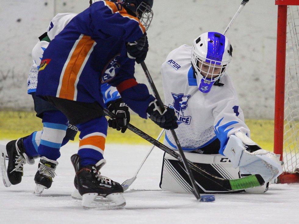 Hokejový Capri Sun Cup v Litoměřicích