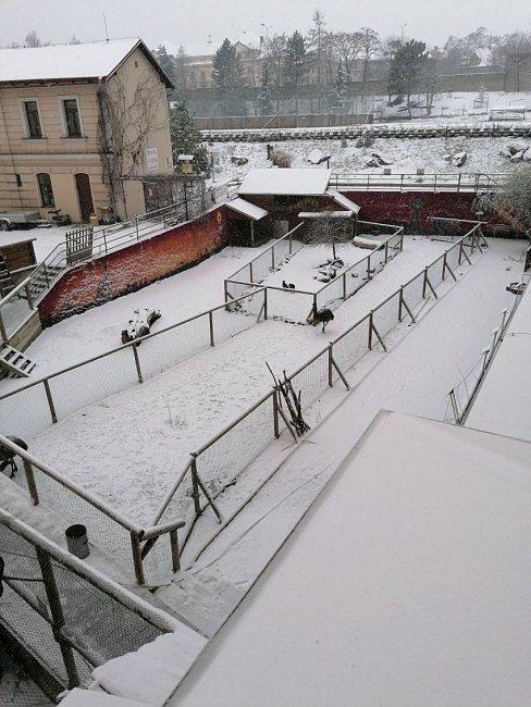 Biopark teplického gymnázia.