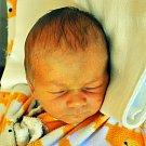 Josef Říha se narodil Petře Čechákové z Hostomic 21.července v 11,17 hod. v teplické porodnici. Měřil 51 cm a vážil 3,25 kg.