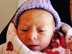 Sofie Salačová se narodila Romaně Málkové z Duchcova 28.  ledna  v 15.12  hod. v teplické porodnici. Měřila 43 cm a vážila 2,05 kg.