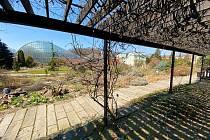 Z uzavřené Botanické zahrady Teplice.