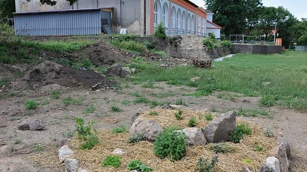Komunitní zahrada v Teplicích. Ilustrační foto.