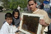 Julius Šarközi ukazuje dětem plástev se včelami.