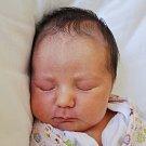 Eliška Zvoníčková se narodila Elišce Galové z Krupky 13. července  ve 13.01 hod. v teplické porodnici. Měřila 47 cm a vážila 2,7 kg.