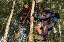 Hasiči pomáhali u Holého vrchu na Teplicku vyprosti paraglidistu uvízlého na stromě.