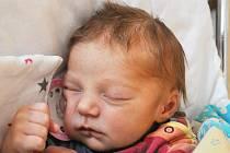 Anežka Bőhmová se narodila Andree Holíkové z Teplic 11. května v 18,53 hodin v teplické porodnici. Měřila 50 cm, vážila 3,40 kg.