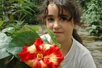 V botanické vykvetla vzácná květina.