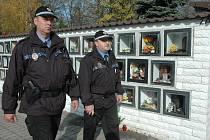 MP Teplice/ ilustrační foto