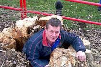 Staré, poškozené a život ohrožující stromy byly vykáceny, nahradí je nově vysazených 212 stromů a 640 keřů