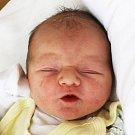 Adéla Vošická se narodila Miroslavě Vošické z Proboštova 12. července  v 15.45 hod. v ústecké porodnici. Měřila 48 cm a vážila 3,05 kg.