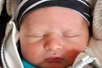 Dominik Karrmann se narodil Michaele Poláčkové  z Teplic 7. září  ve 22.15  hod. v teplické porodnici.  Měřil 51 cm a vážil 3,50 kg.