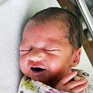 Linda Wojtaszeková se narodila Markétě Dvořákové  z Teplic  18. července  v 17.50 hod. v teplické porodnici. Měřila 45 cm a vážila 2,0 kg.