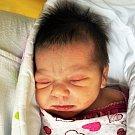 CHANTALLE HORVÁTOVÁ se narodila Andree Horvátové z Bíliny 9. října v 10.52 hod. v teplické porodnici. Měřila 48 cm a vážila 2,95 kg.