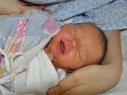Zuzana Štěpánková se narodila Lucii Štěpánkové z Mrzlic 15. dubna v 2:47 hodin v teplické porodnici. Měřila 45 cm, vážila 2,4 kg.