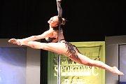 Anketa Nejúspěšnější sportovec Teplicka -  vystoupení pole dance