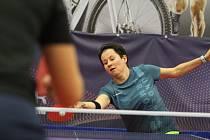 Mistrovství České republiky ve stolním tenise v Teplicích