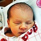 VIKTORIE OPELTOVÁ se narodila Daně Opeltové z Teplic 24. ledna v 16.46 hod. v teplické porodnici. Měřila 49 cm a vážila 2,80 kg.