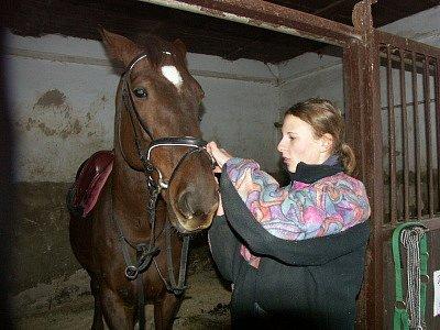 Koníky v Doubravicích čeká zimní odpočinek