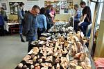10. ročník velké amatérské burzy minerálů a zkamenělin na Gymnáziu Teplice