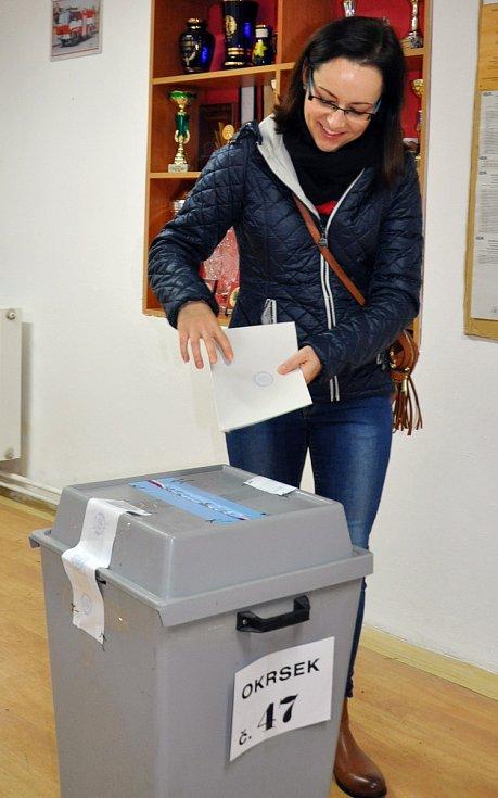 Volby v Sobědruhách
