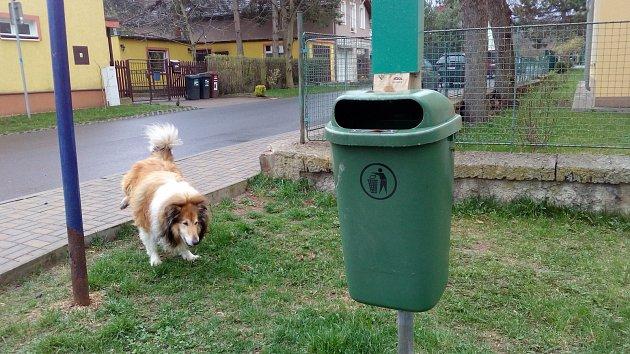 V Proboštově je košů na psí exkrementy dostatek. Bohužel se často stávají terčem vandalů.