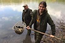 Rybáři na Teplicku vysadili 1000 kusů lína obecného.