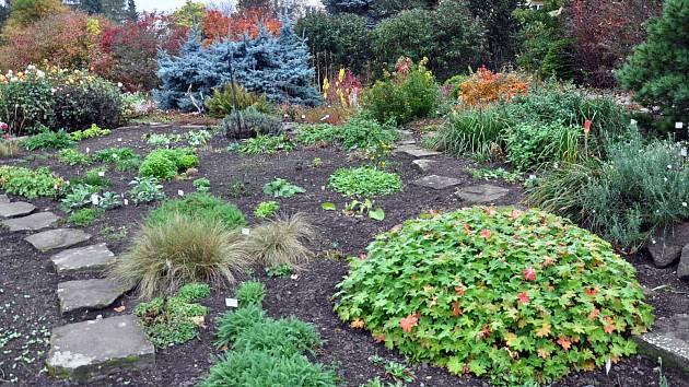 Botanická zahrada v Teplicích. Ilustrační foto