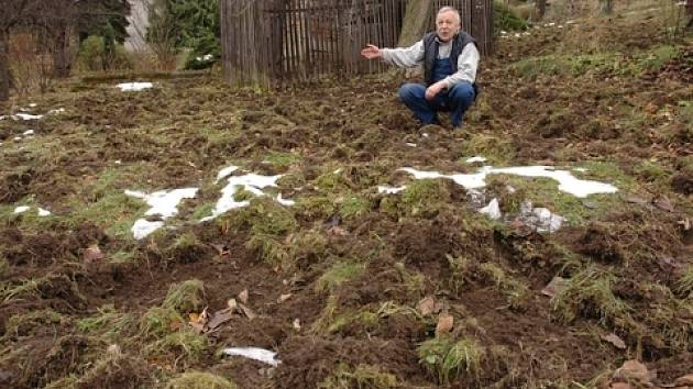 Viktor Pavel ukazuje na zdevastovanou zahradu
