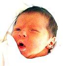 VICTORIA VAJNEROVÁ se narodila Kamile Vajnerové z Dubí 20. listopadu v 5.03 hod. v ústecké porodnici. Měřila 45 cm a vážila 2,53 kg.